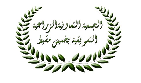 الجمعية التعاونية الزراعية التسويقية بخميس مشيط