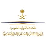 وزارة الطاقة والصناعة والثروة المعدنية
